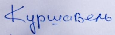 особенности почерка, небрежность