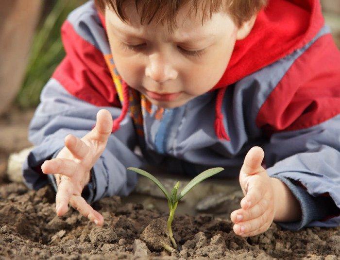ребенок маленький будда, мудрость не в возрасте